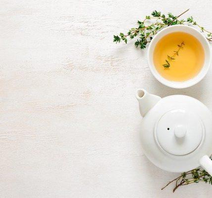 zielona herbata na czczo